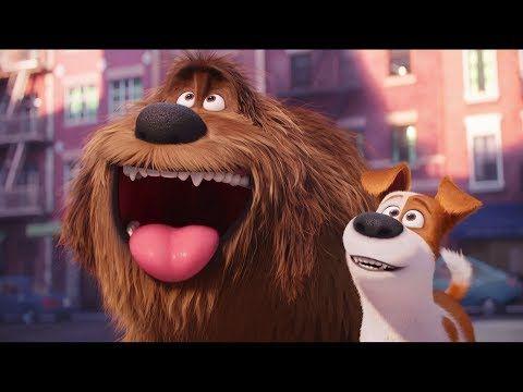 The Secret Life Of Pets Best Scenes Youtube Pets Movie