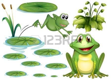 Dessin fleur lys jeu de grenouille verte et n nuphar aquarelles grenouilles ii dessin - Dessin de grenouille verte ...