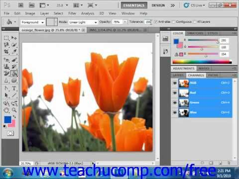 Learn How To Use The Paint Bucket Tool In Adobe Photoshop At Www Teachucomp Com A Clip From Mastering Photoshop Made Easy V Cs5 Http Photoshop Cs5 Tutorials