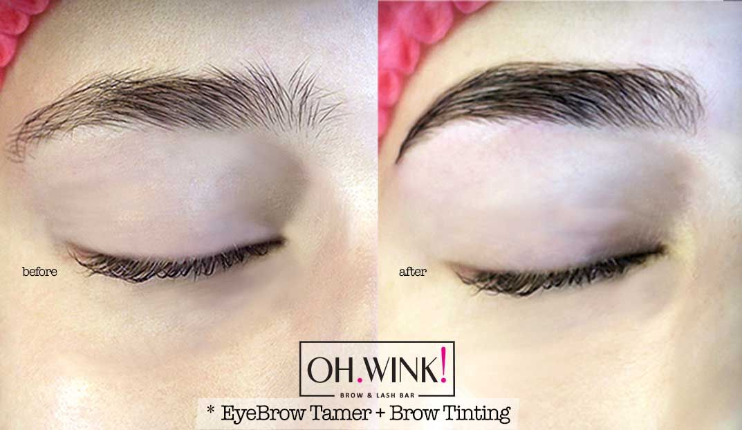 Eyebrow Tamer Brow Lamination Brows Eyebrows Brow Lash