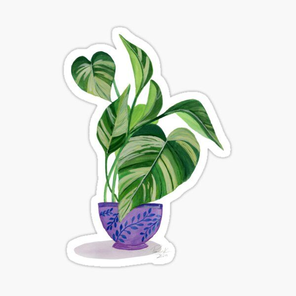 HeadOverEasel Shop | Redbubble in 2020 | Plant art, Floral ...