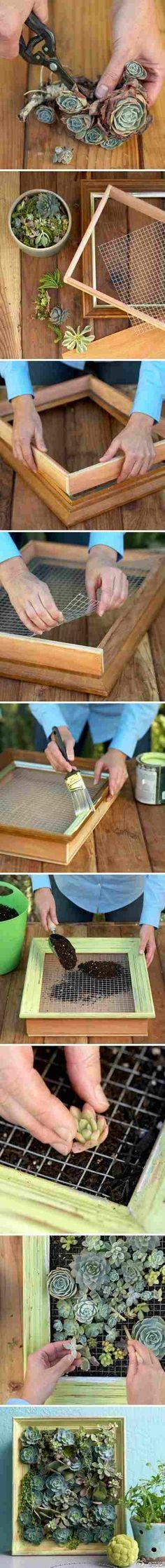 Gartendeko zum selbermachen sukkulenten bilderrahmen for Gartendeko zum selbermachen