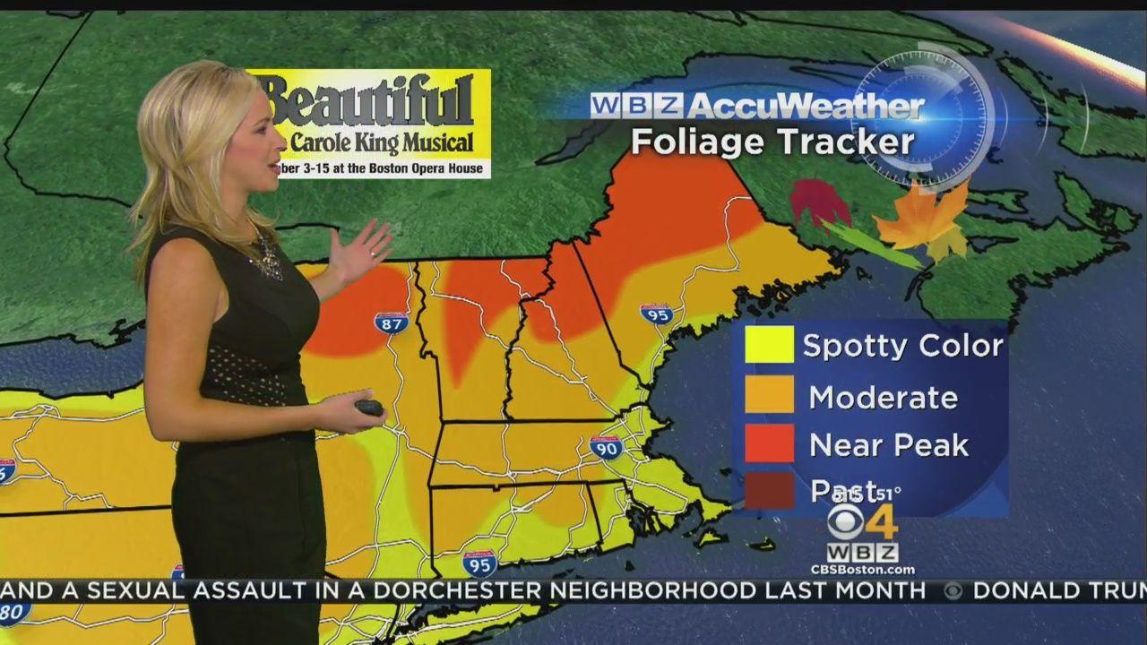 wbz accuweather morning forecast for oct 12 latest weather forecast