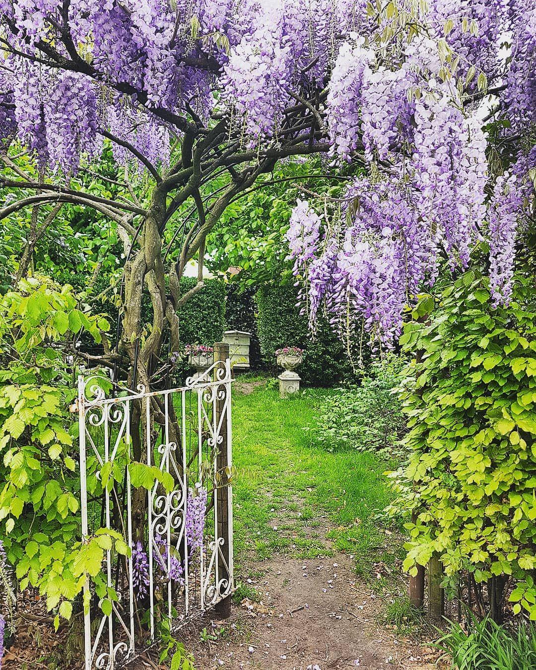 """Brocante by Dejavu on Instagram """"Our secret garden...."""