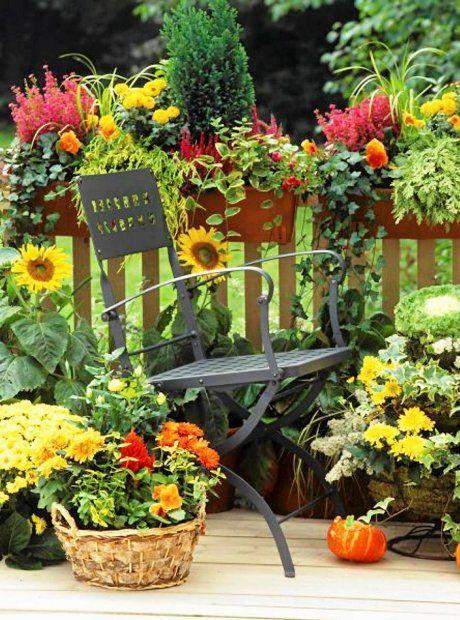 Zdjecie Nr 2 W Galerii Jesienne Aranzacje Na Balkony I Tarasy Autumn Garden Patio Flowers Garden Seating