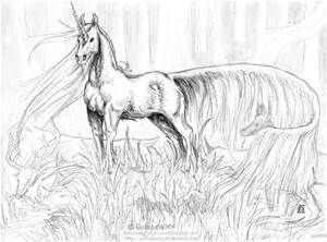 unicorn | Horse coloring pages, Unicorn coloring pages ...