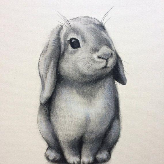 ORIGINAL Bild Kaninchen Zeichnung Illustration von narteck
