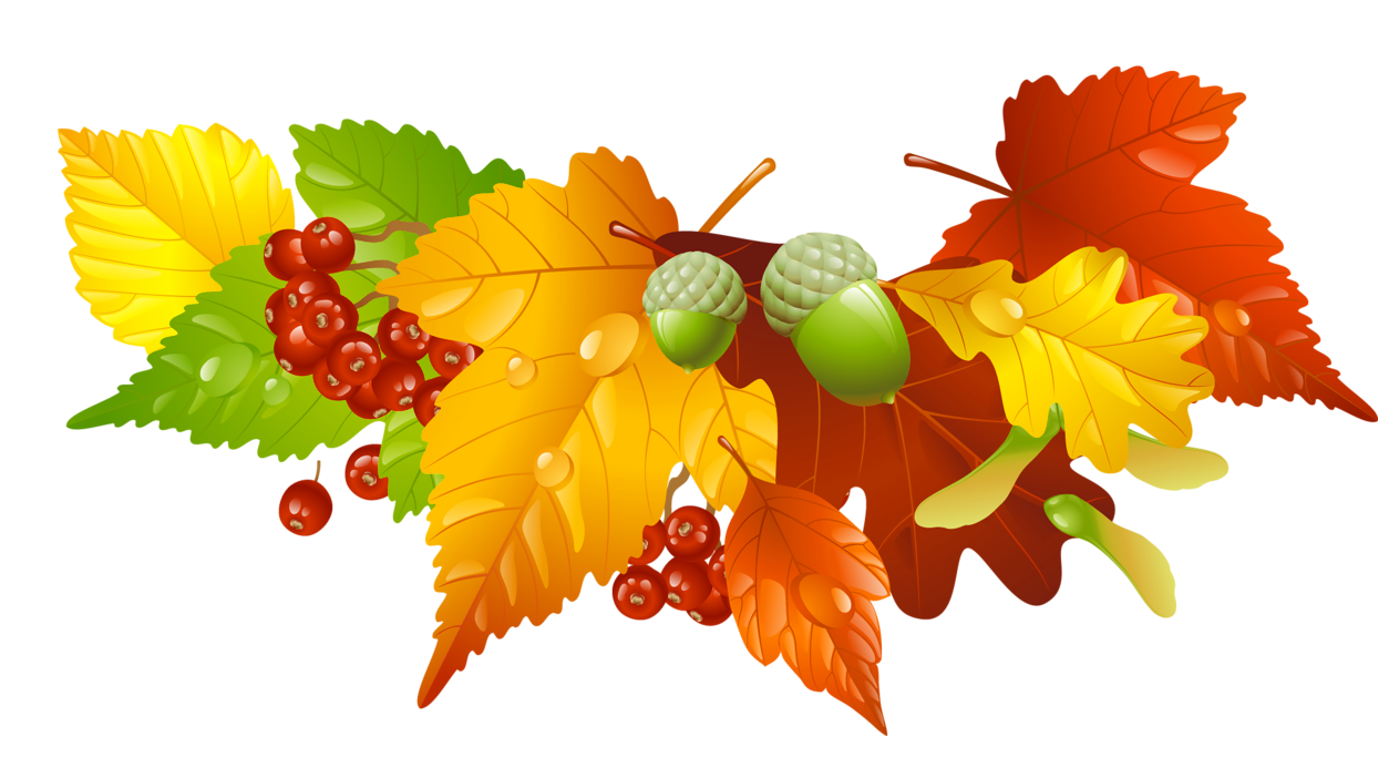 Autumn Leaves And Acorns Decor Png Picture Autumn Leaves Fall Clip Art Acorn Decorations