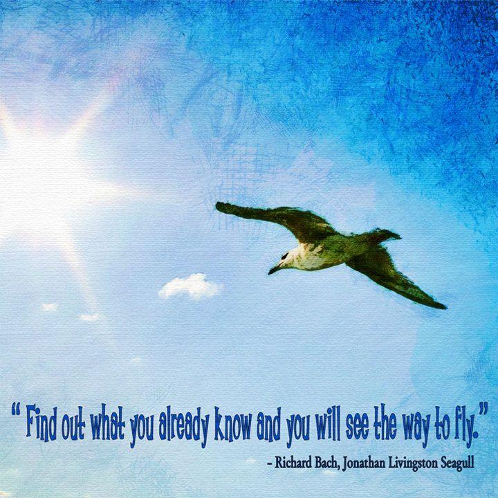 Richard Bach Jonathan Livingston Seagull Jonathan Livingston