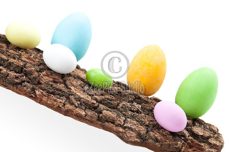 Cute Easter arrangement with chocolate eggs in raw on piece of bark.