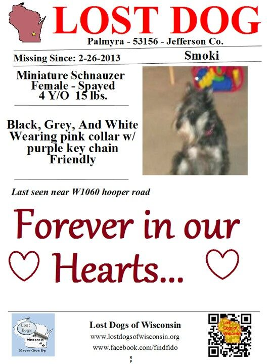 Pin By Pam On Lost Please Help Me Home Losing A Dog Losing A Pet Find Pets