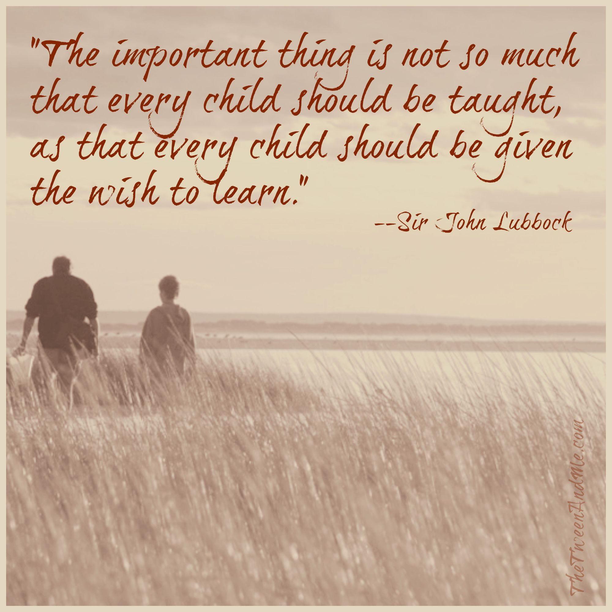Sir John Lubbock quote about children wanting to learn