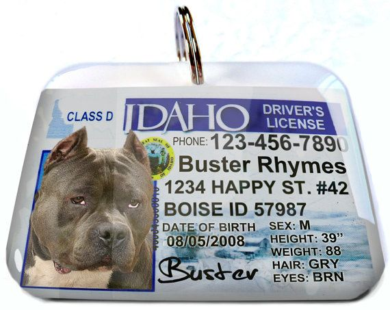 Idaho Driver License Dog Id Collar Unique Dog Id Tags Custom Pet