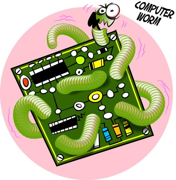 what is a computer worm