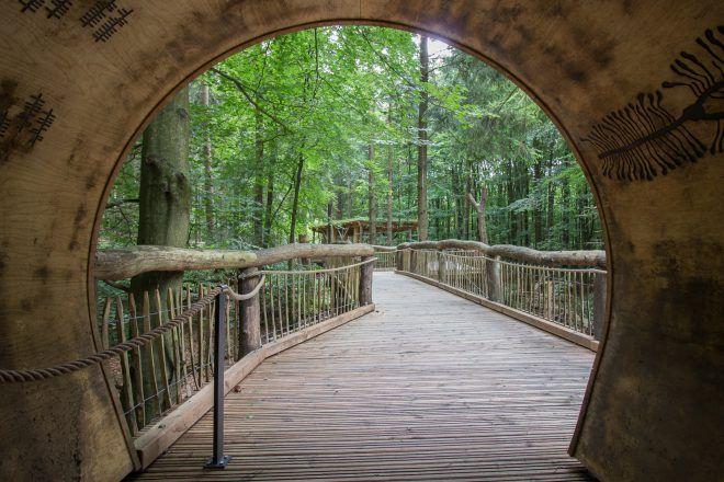Kermeters Wilder Weg: Wandern in der Natur für alle
