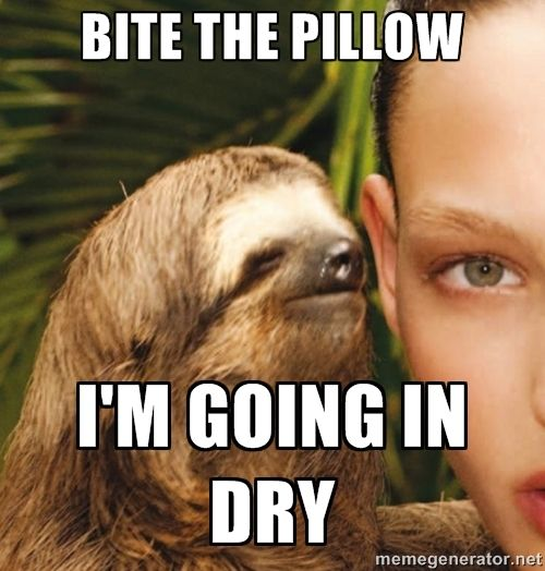 c7e70c6e852a967db77e0d0f82b30510 sloth meme google search funny pictures pinterest sloth