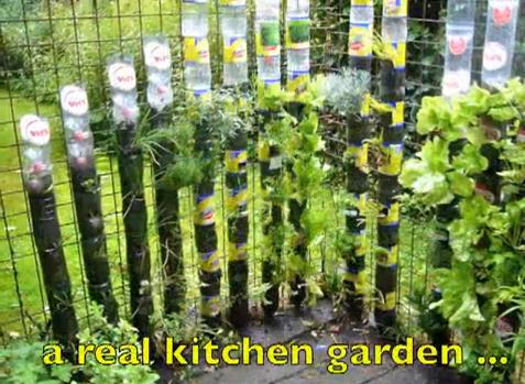C mo hacer un jard n con botellas de pl stico casas ecol gicas reciclaje pinterest de - Casas de plastico para jardin ...