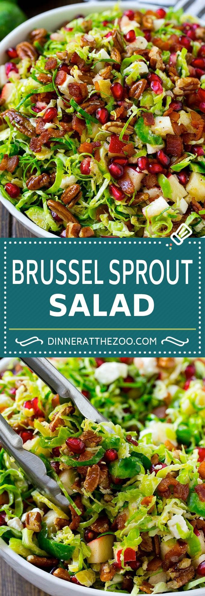 Brussels Sprout Salad - Dinner at the Zoo