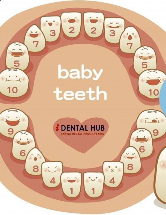 baby teeth a schedule in teething and not sleeping