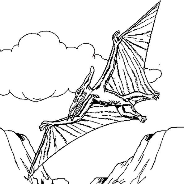 Le pt ranodon de dessin est un dinosaure volant sans dent - Dessin volant ...