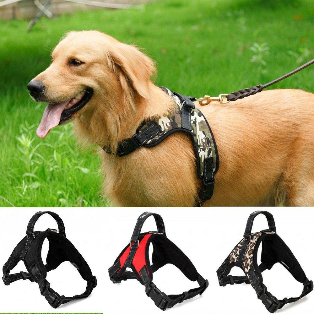 Shepherd Pets Vest Dog Leads Lighted Harness Led Vest Dog Leash Collar Harness Glowing Nylon Adjustable Chest Belt Flashing E Home & Garden