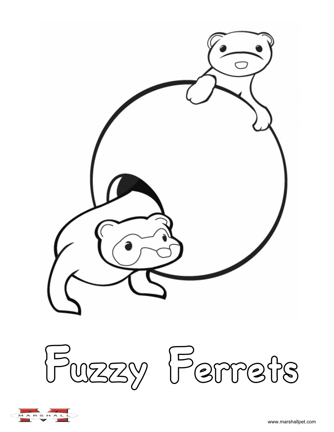 Ferrets Coloring Pages Coloring Pages For Kids Alphabet Activities
