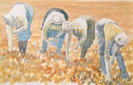 The Crop Pickers, John Graven, John Graven, SAA Professional Members' Galleries