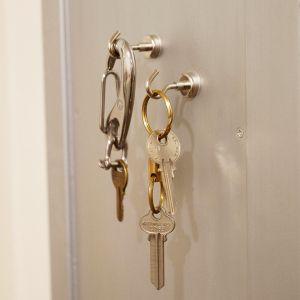 Wol ウォル Magnethook マグネットフック マグネット 玄関ドア