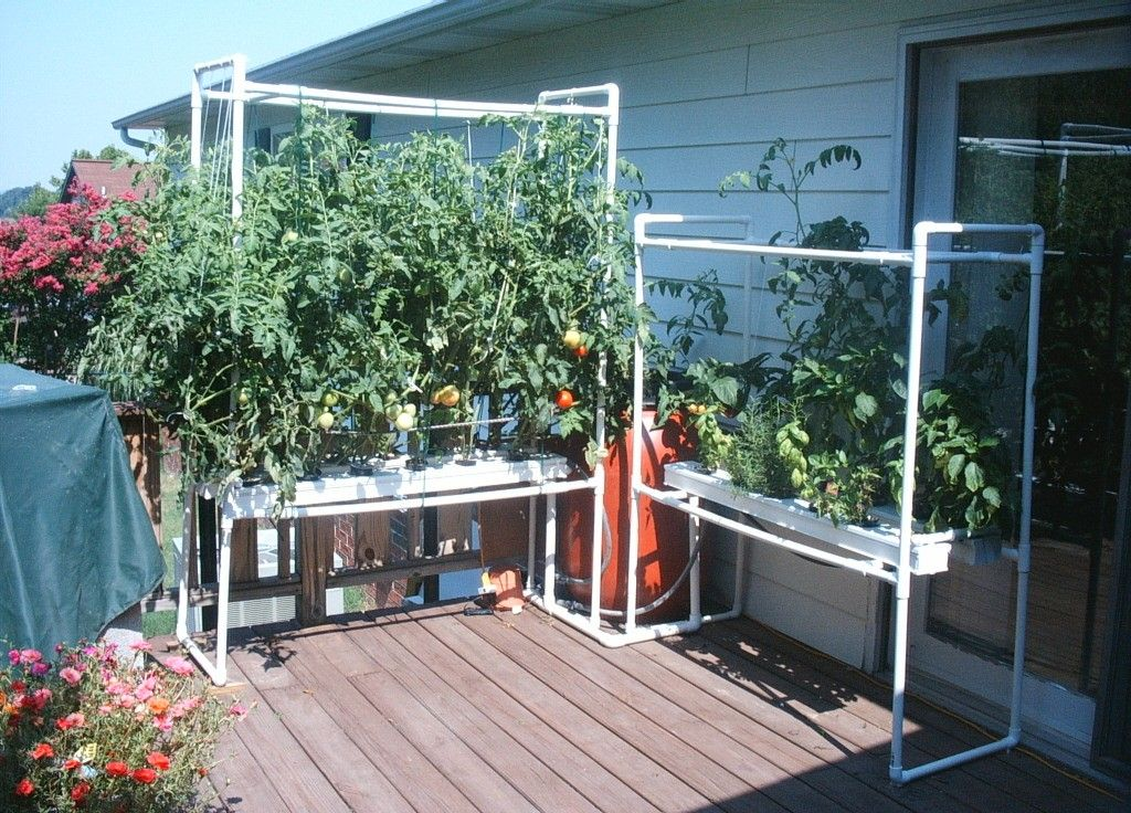 Do It Yourself Home Design: DIY Hydroponics Aquaponic Systems