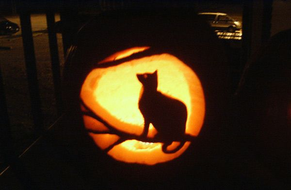 21 incredible cat pumpkin carvings halloween pumpkins for Cat carved into pumpkin