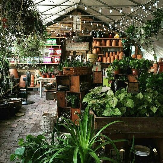 Home Decorating On A Budget   Garden center displays ...
