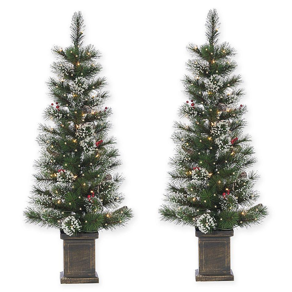 4' PreLit Potted Loveland Spruce Trees (Set Of 2) Green