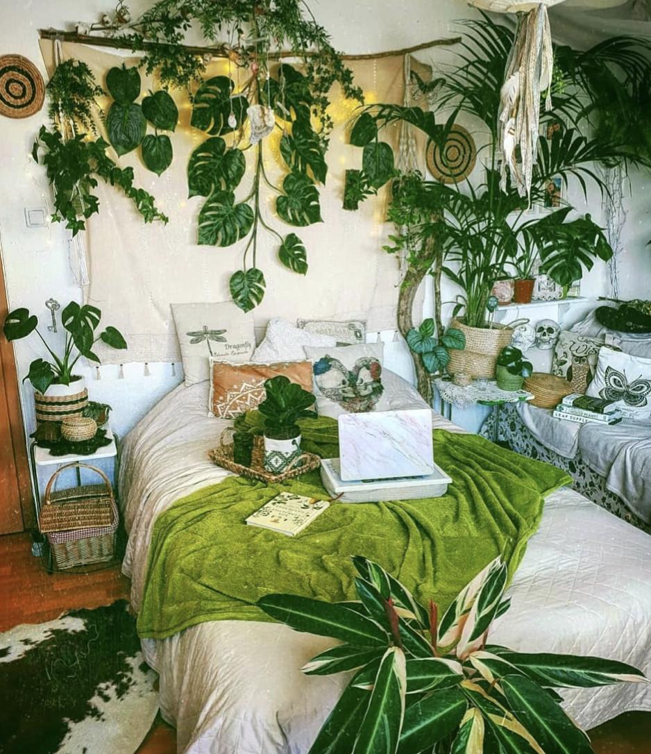 Focus On House Plants Claire Heffer Design Boho Room Inspiration Bohemian Bedroom Design Scandinavian Bedroom Decor