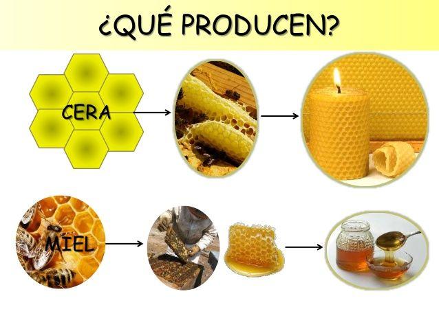 Image: Las abejas para Educación Infantil | dominos | Pinterest | Bees