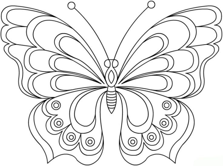 Kostenlose Malvorlagen Von Schmetterlingen Schmetterling Vorlage Malen 596 Malvorlage Vorlage Ausmalbilder Butterfly Coloring Page Butterfly Art Coloring Pages