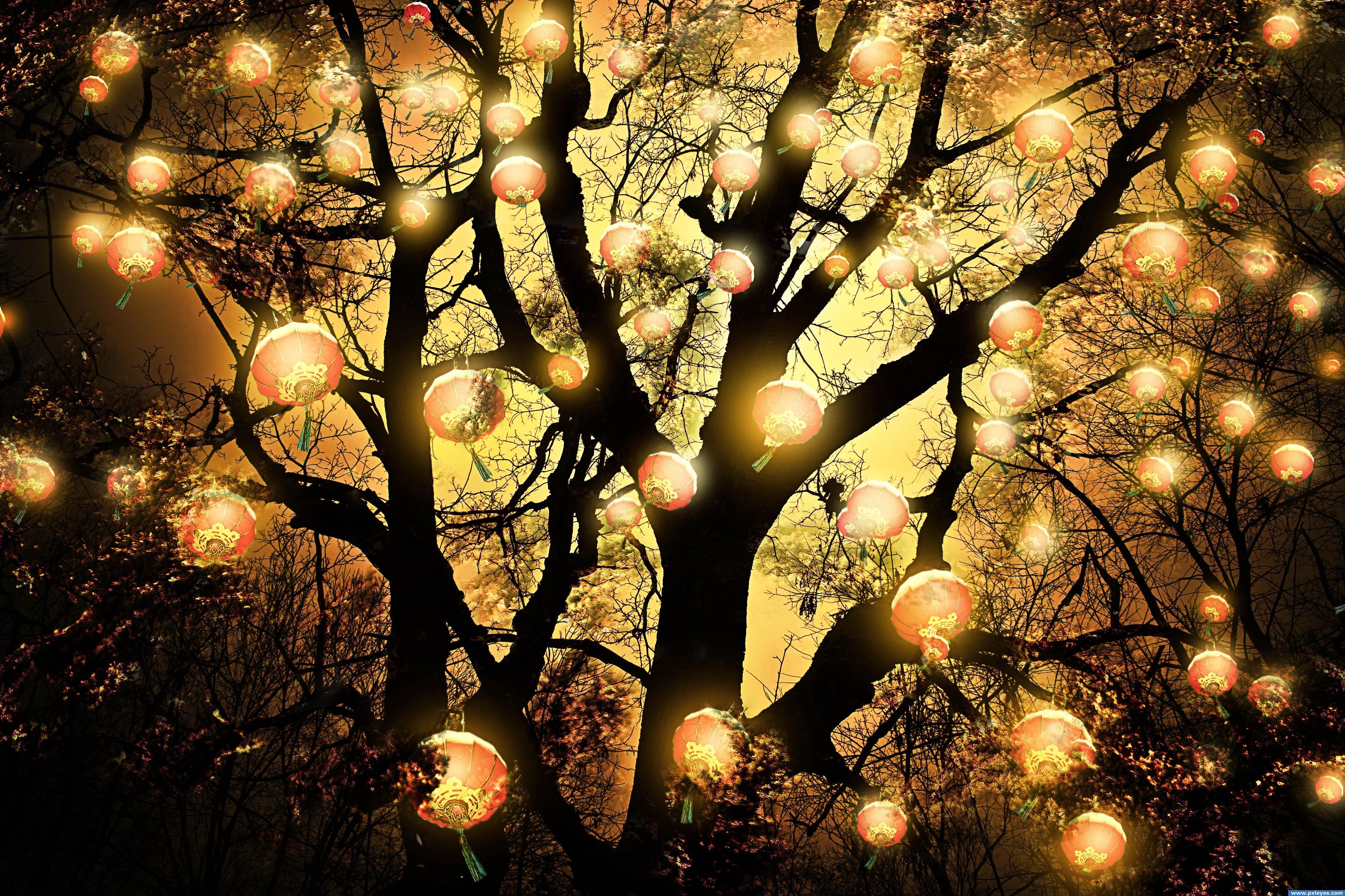 могут делаться дерево фонарь картинки эти годы они