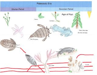 Image result for montessori elementary  great lesson language pics