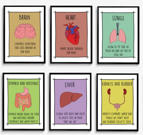 Classroom Wall Art - Set of 6 Educational Posters/School Decor ...