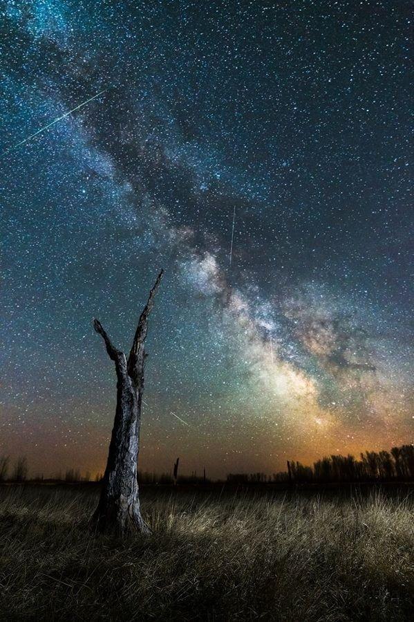 abiesque:  South Dakota by Marshall Lipp