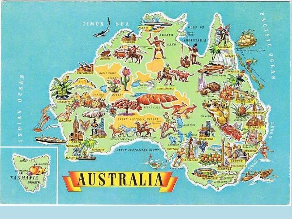 карта австралли с животными: 1 тыс изображений найдено в Яндекс.Картинках