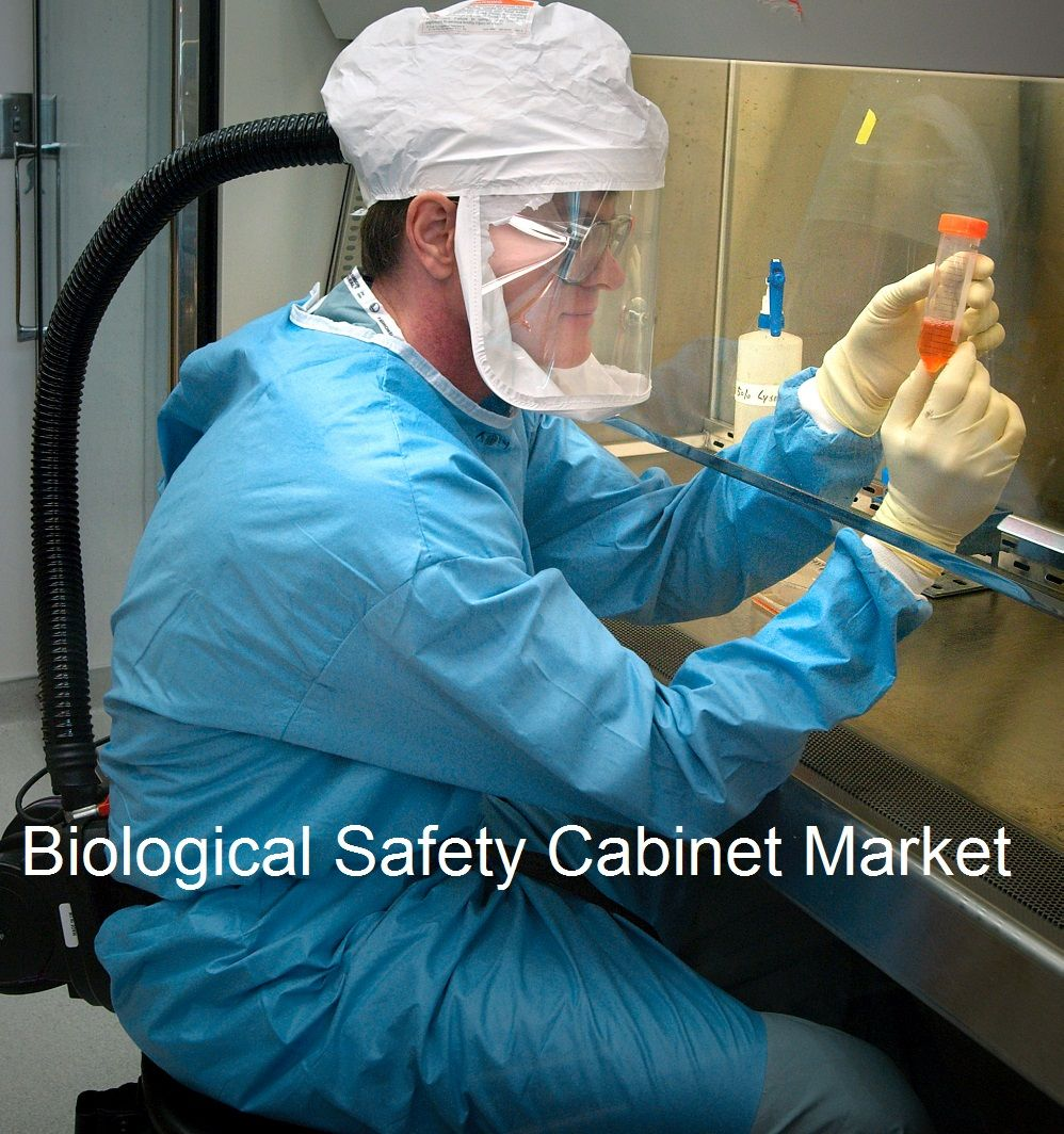Global biological safety market by types size