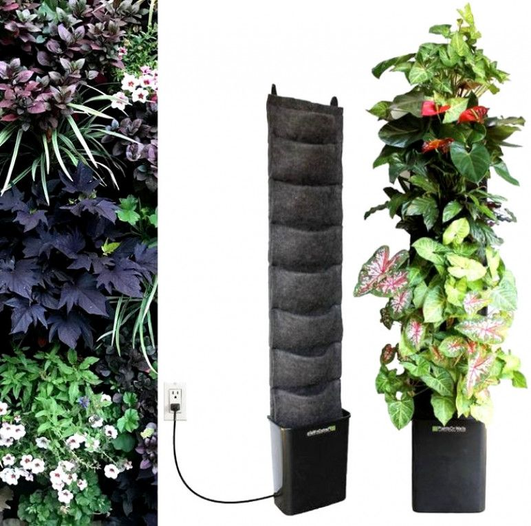 Urban Vegetable Gardening For Beginners: Cheap Home Remodel Ideas - SalePrice:27$