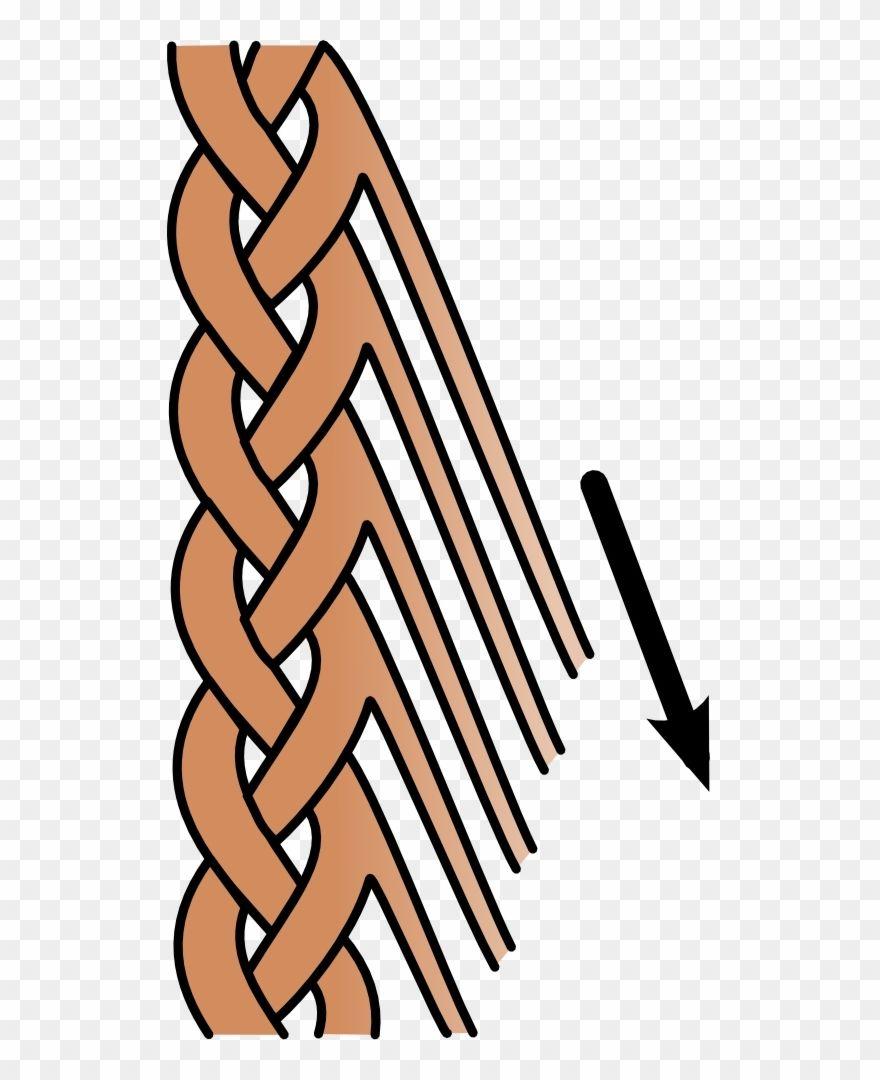Braid Clipart Ideas Clip Art Free Clip Art Braids