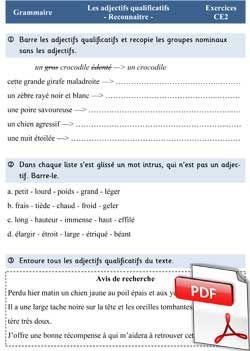 L'adjectif qualificatif - exercices CE2 | Adjectif qualificatif, Exercice ce2, Grammaire ce2