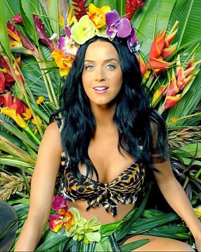 Katy Perry Tames The Savage Beasts In Roar Video Katy Perry