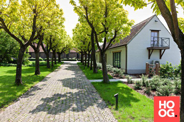 Luxe tuininspiratie met grassen en beplanting tuin ideeën tuin