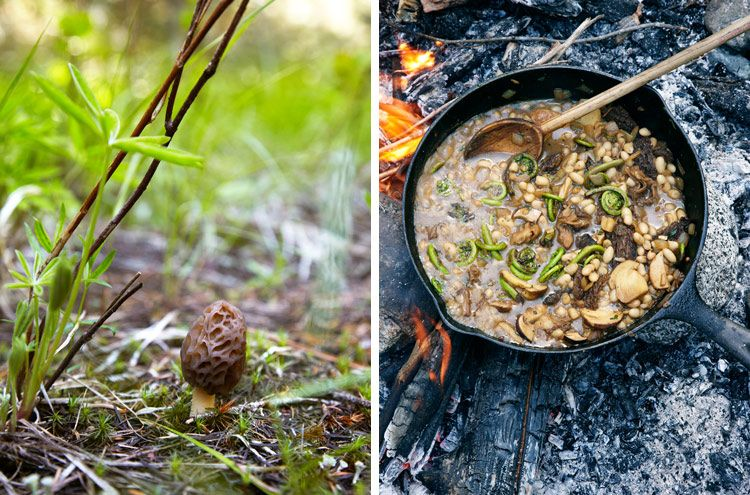 Makes me want to go foraging for wild mushrooms. By Marcus Nilsson.