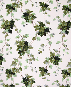 English Ivy Wallpaper Ivy S Cottage Ivy Plants