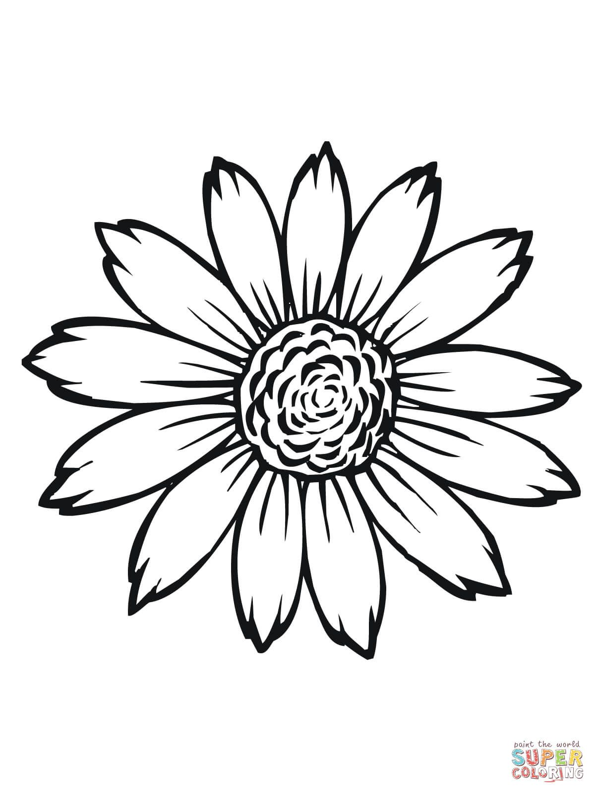 Sunflower Flower Coloring Pages Printable