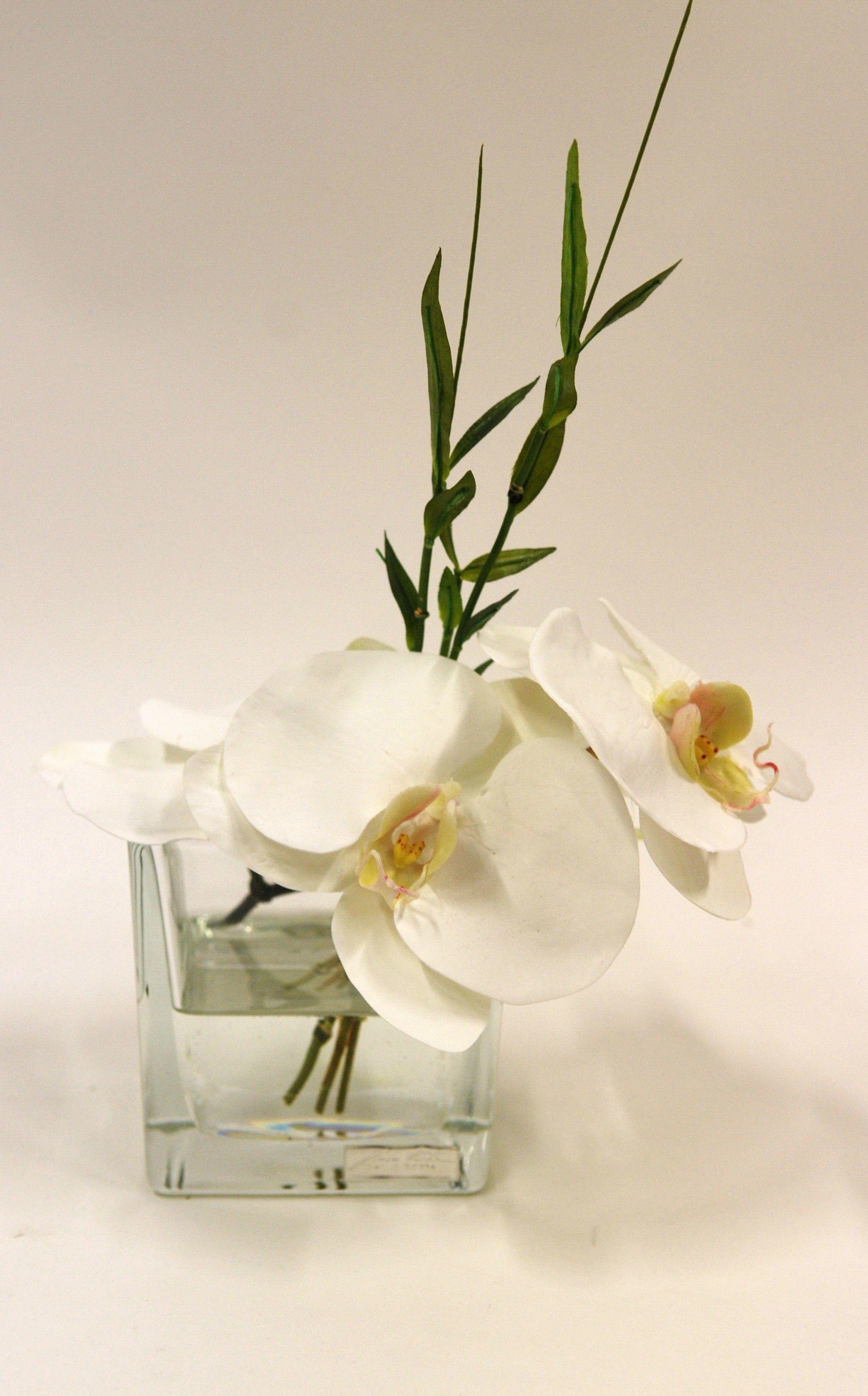 Composition Carree Pm Orchidee Sign E Emilio Robba Deco Nature